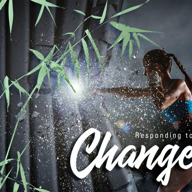 """Fotocollage Frau boxt gegen eine Wand, davor ein Bambusstrauch und der Schriftzug """"Responding to change"""""""